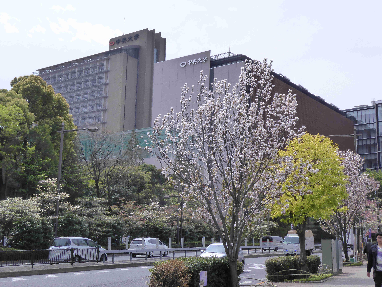 大学 キャンパス 中央 後楽園